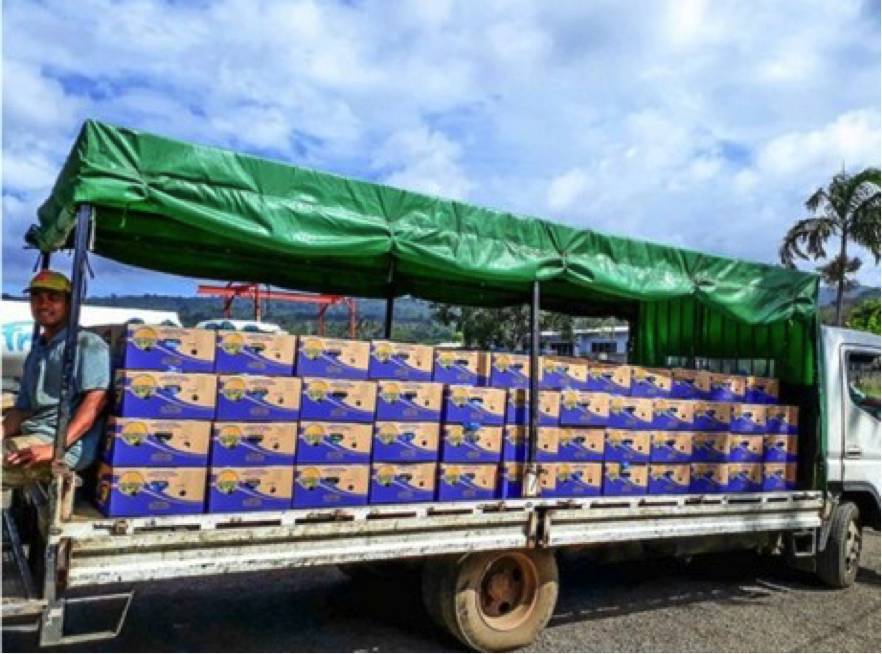 The trial shipment is the first banana export for the country since cyclone Gita hit in February